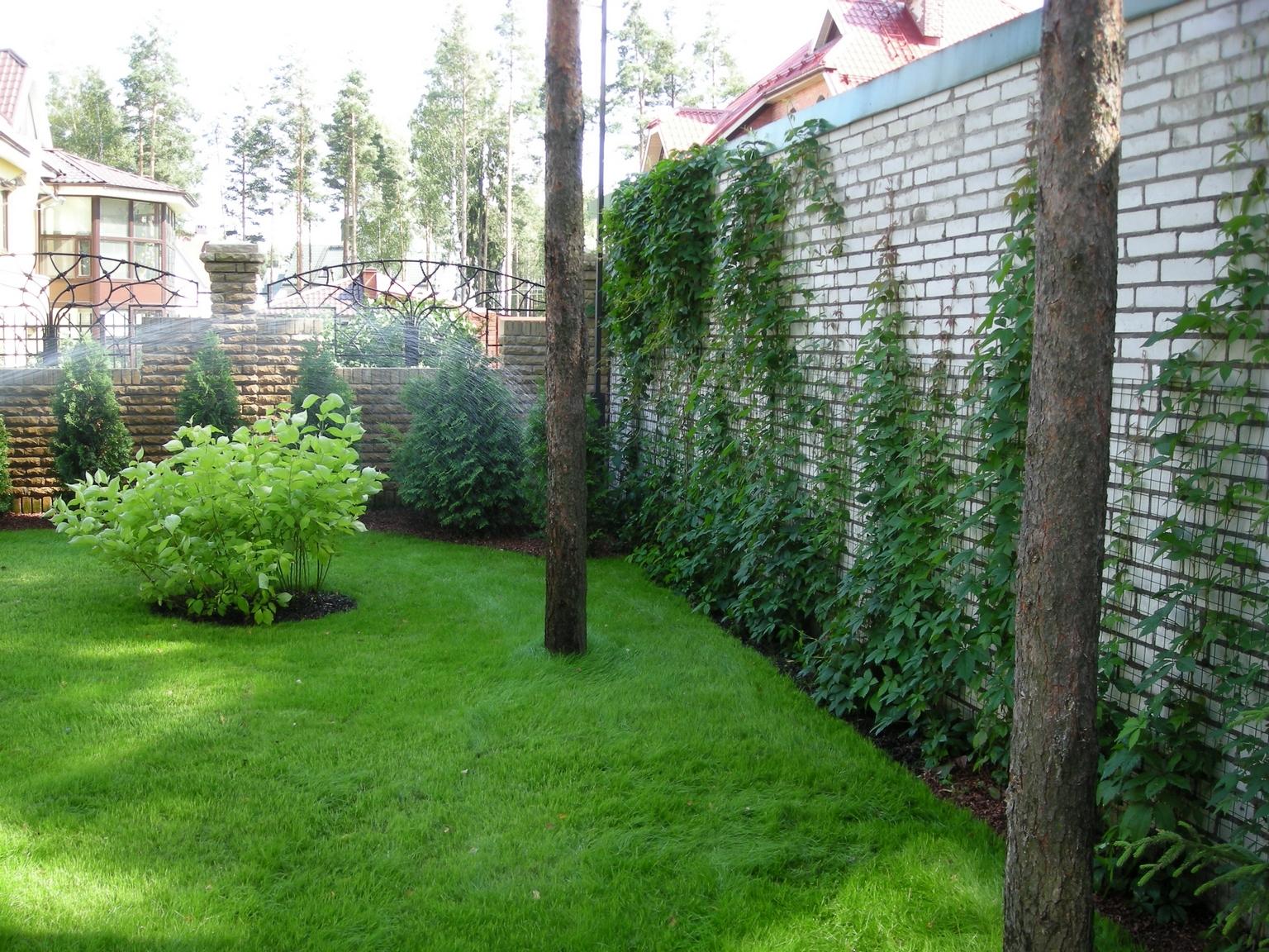 Маленький сад